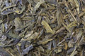Green tea leaves background Royalty Free Stock Photos