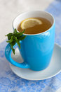 Green tea with lemon and mint hot or cold on the white blue napkin Stock Image