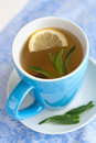 Green tea with lemon and mint hot or cold on the white blue napkin Stock Photography