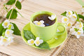 Green tea and sprigs of jasmin Royalty Free Stock Photography