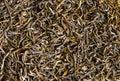 Green tea texture Stock Photos