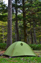 Green tent at campsite in forest a is erected a forested Stock Photos