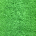 Green textured paper Royalty Free Stock Photo