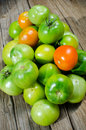 Green tomatoes freshly picked ready for canning pickling Royalty Free Stock Photography