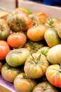 Green tomatoes at a market Stock Photography