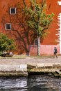 Green tree casting a shadow against a red building Royalty Free Stock Photo