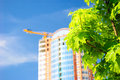 Green tree and growing building. Royalty Free Stock Photo