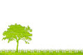 Green Tree Nature From Grass W...