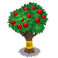 Green tree with red fruits and gold holder. Vector Royalty Free Stock Photo