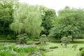 Green trees, bridge, flowers in Japanese park Royalty Free Stock Photo