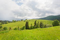 Green trees on mountains on wide rural landscape Royalty Free Stock Photo