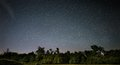 Green Trees Under Starry Sky during Nighttime Royalty Free Stock Images