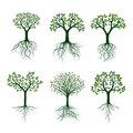 Green of Trees . Vector Illustration.