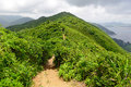 Green Tropical mountains and hiking route on the Dragon's Back trail near Hong Kong Royalty Free Stock Photo