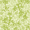 Green underwater seaweed seamless pattern vector background with hand drawn elements Royalty Free Stock Photo