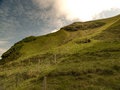 Green vacant pasture hill and bright sun with wired fence and wooden posts located in heimaey vestmannaeyjar iceland Stock Photos