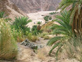 Green valley on Sinai. Stock Photo