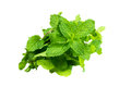 Green vegetable isolated the mint on white background Royalty Free Stock Images