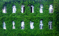 Green Wall In A Sustainable Bu...