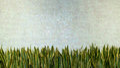 Green Wall Tile Porcelain Mosa...