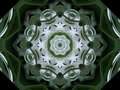 Green and White pinwheel Royalty Free Stock Photo