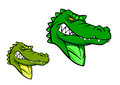 Green wild alligator in cartoon style for sports mascot design Royalty Free Stock Photo
