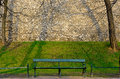 Green wooden bench in the morning spring park Royalty Free Stock Photo
