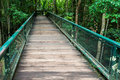 Green wooden bridge in nature Royalty Free Stock Images
