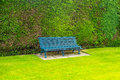 Green wooden garden bench with green grass Royalty Free Stock Photo