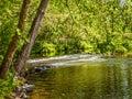 Green Woodlands Stream Royalty Free Stock Photo
