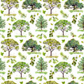 Green woods. Park, forest pattern with trees. Seamless pattern. Watercolor Royalty Free Stock Photo