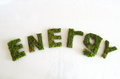 Green word energy letters made ​​of moss on a white backgownd Royalty Free Stock Photos