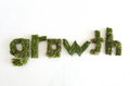 Green word growth letters made ​​of moss on a white backgownd Stock Photos