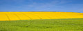 Green yellow and blue in lincolnshire countryside Stock Image