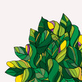Green and yellow floral doodle background