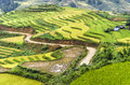 Green and yellow rice field terraces beautiful landscape with red black hmong village area sapa vietnam Stock Photography