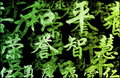 Green Zen Grunge Abstract Background Stock Images