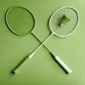 Greenery badminton racket Royalty Free Stock Photo