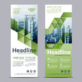 Greenery Roll up layout template mock up. flag flyer banner backdrop design. vector illustration