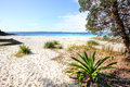 Greenfields beach australia beautiful unspoilt white sandy jervis bay Royalty Free Stock Photo
