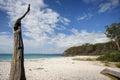 Greenfields Beach Jervis Bay A...