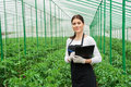 Greenhouse female inspector checking plants Royalty Free Stock Photo