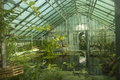 Greenhouse interior of a glass with plants and water Stock Photo