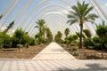 Greenhouse L'Umbracle