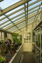 Greenhouse. National Botanic Gardens. Dublin. Ireland Royalty Free Stock Photo
