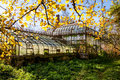 Greenhouse picture of abandoned in fall Royalty Free Stock Images