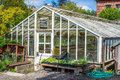 Greenhouse plant nursery Royalty Free Stock Photo