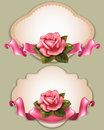 Greening cards vintage greeting with gentle pink rose and ribbon Royalty Free Stock Photos