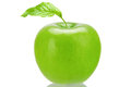 Greening fresh green apple isolated on the white background Stock Photography