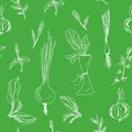 Greens and salad seamless hand drawn Royalty Free Stock Photos